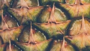 Complementos Enzimas Ananas